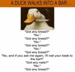 A Duck Walks Into A Bar...