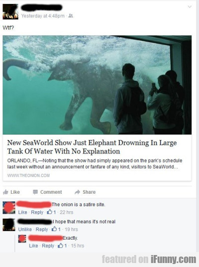 Wtf New Sea World Show Just Elephant