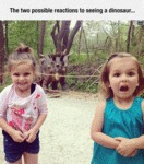 The Two Possible Reactions To Seeing A Dinosaur...