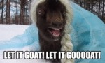 Let It Goat Let Is Gooooat