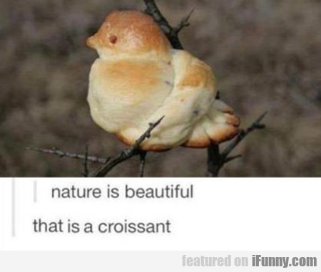 Nature Is Beautiful...