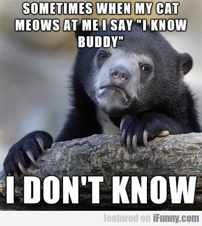 Sometimes When My Cat Meows At Me...