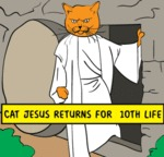 Cat Hsus Returns For 10th Life