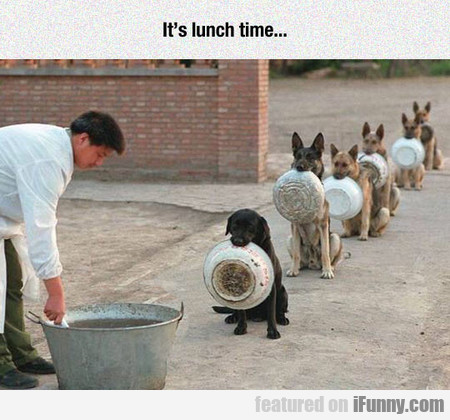 it's lunch time...