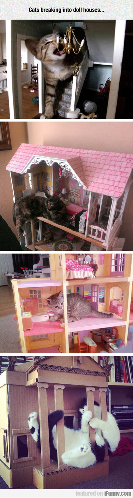Cats Breaking Into Doll Houses