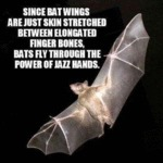 Since Bat Wings Are Just Skin Elongated Between...