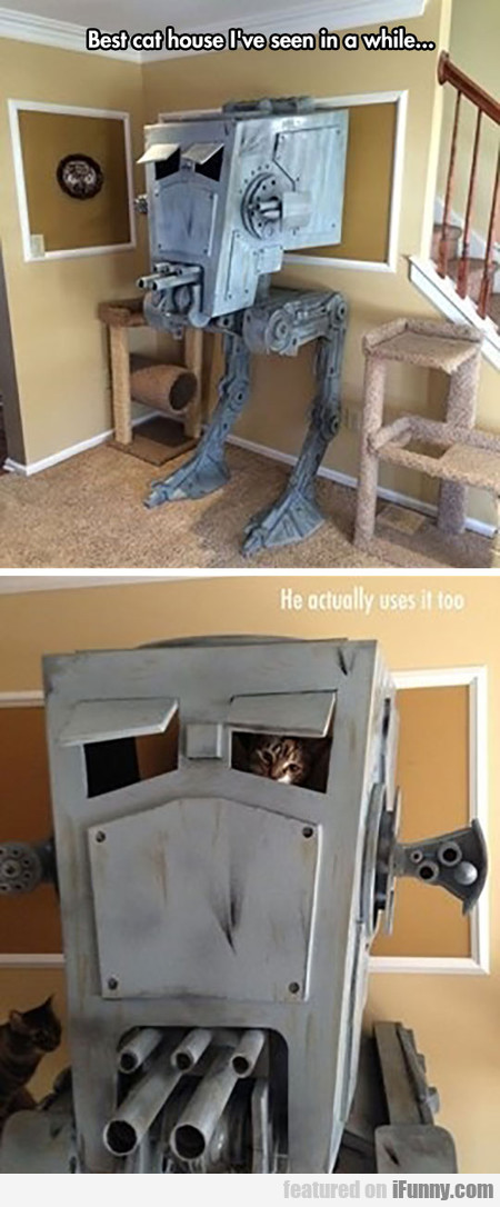 Best Cat House I've Seen In A While