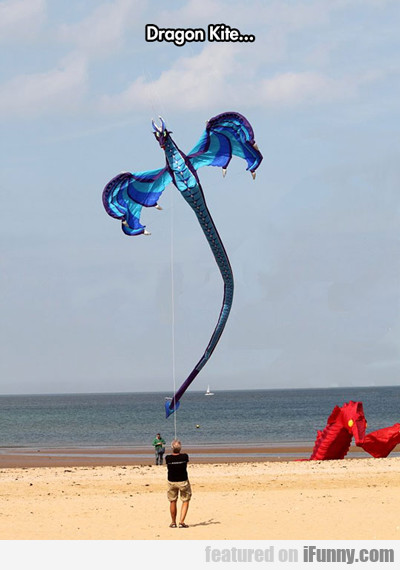 Dragon Kite...