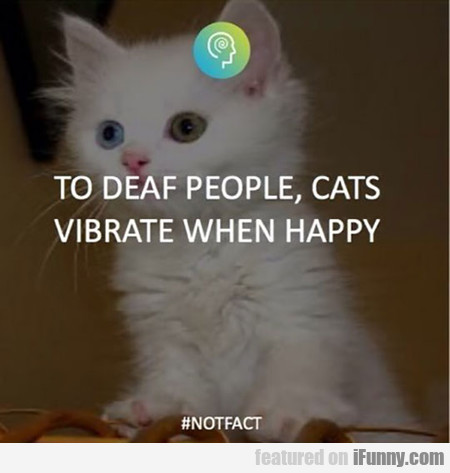 To Deaf People, Cats Vibrate When Happy