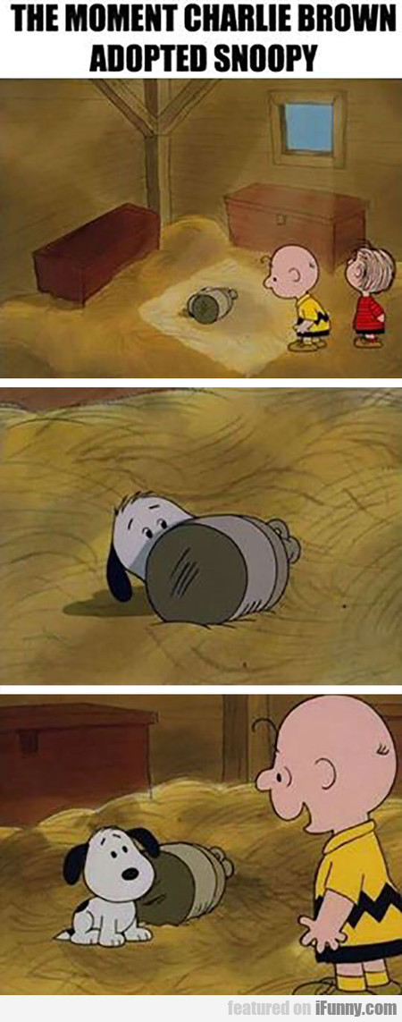The Moment Charlie Brown Adopted Snoopy