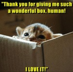 Thank You For Giving Me Such A Wonderful Box...