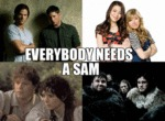 Everybody Needs A Sam...