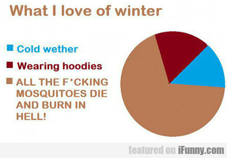 What I Love About Winter...