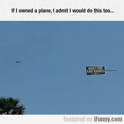 If I Owned A Plane I Would Do This...