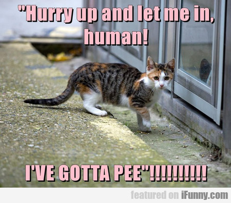 Hurry Up And Let Me In, Human!
