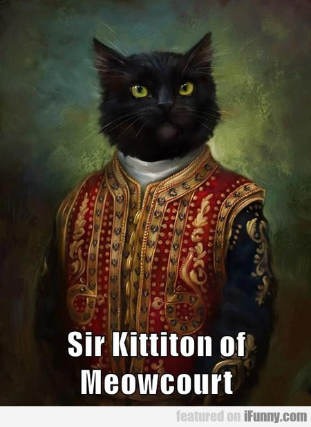 Sir Kittiton Of Meowcourt