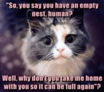 So You Say You Have An Empty Nest, Human?