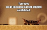 Your Toes Are In Imminent Danger