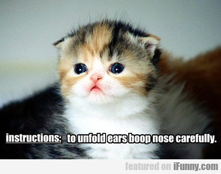 To Unfold Ears Boop Nose Carefully