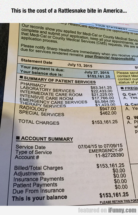 This Is The Cost Of A Rattlesnake Bite In America.