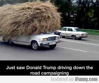 Just Saw Donald Trump Driving Down The Road...