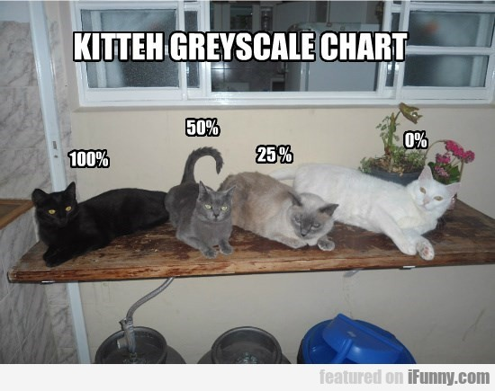 Kitteh Greyscale Chart