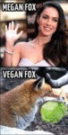 Megan Fox And Vegan Fox...