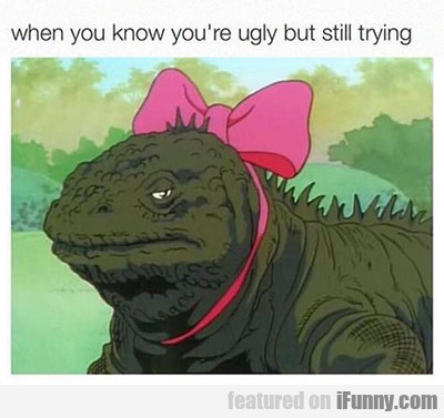 When You Know You're Ugly But Still Trying...