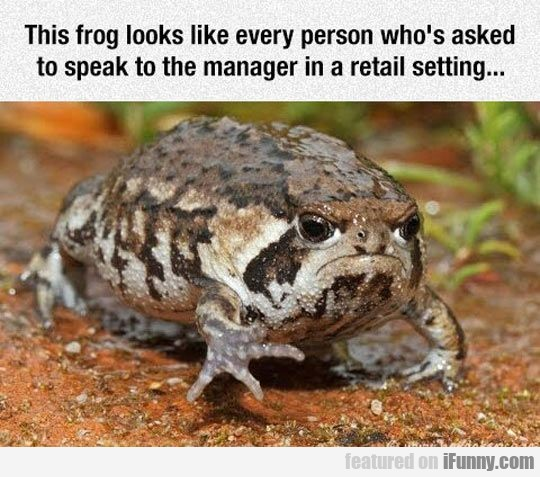 This frog looks like every person who's asked