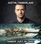 Justin Timberlake, Timber Just In Lake...