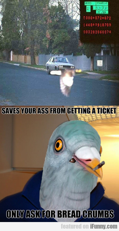 Saves Your Ass From Getting A Ticket...