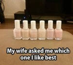 My Wife Asked Me Which One I Liked Best...