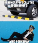 In Hungary We Call Speed Bumps...