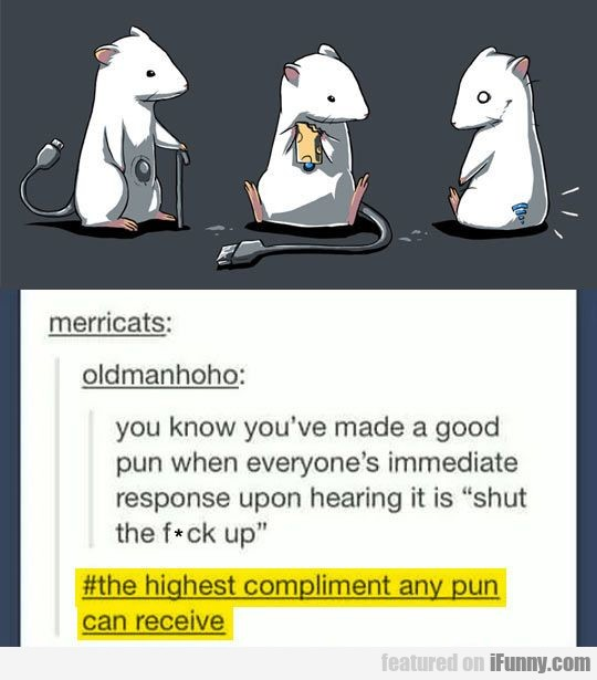 You Know When You've Made A Good Pun