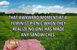 That Awkward Moment At A Feminist Picnic...