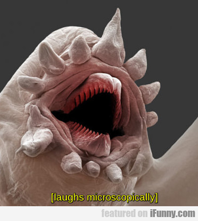 Laughs Microscopically...