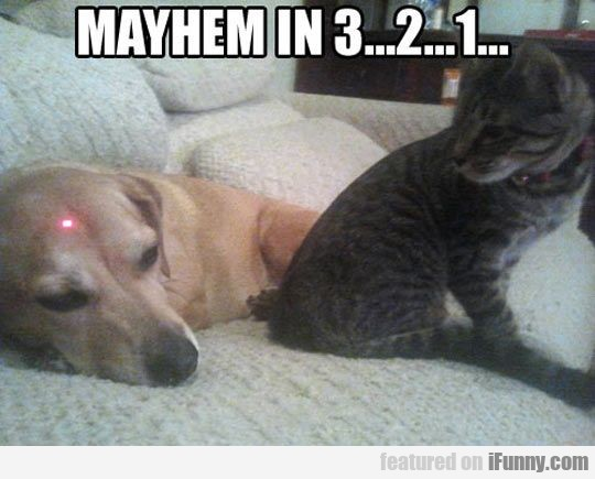 Mayhem In 3...2...1