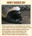 Honey Badger Day