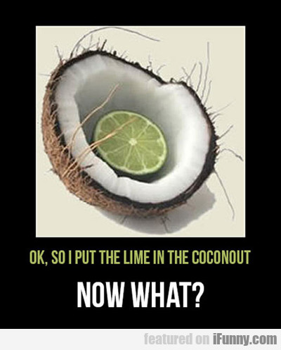I Put The Lime In The Coconut...