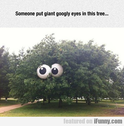 Someone Put Googly Eyes...