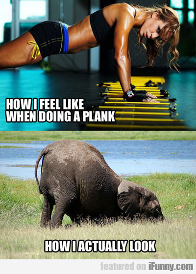 How I Feel Like When Doing A Plank...