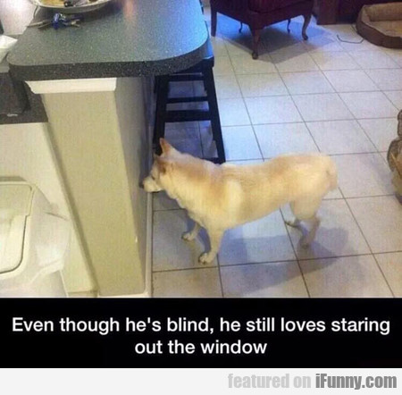 Even Though He's Blind, He Still...