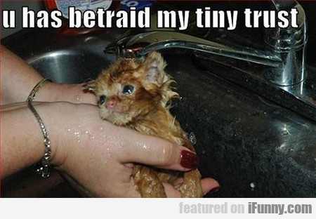 You Have Betraid My Tiny Trust