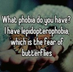 What Phobia Do You Have?