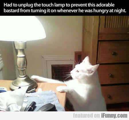 I Had To Unplug The Touch Lamp