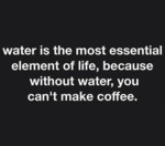 Water Is The Most Essential...