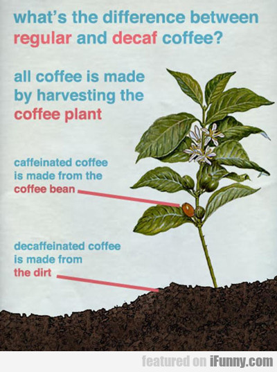 What's The Difference Between Regular And Decaf...