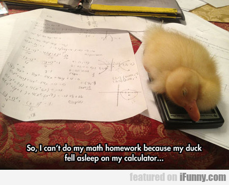 I Can't Do My Math Homework Because...
