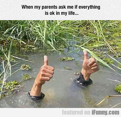 When My Parents Ask Me How Things Are...