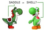 Saddle Or Shell?